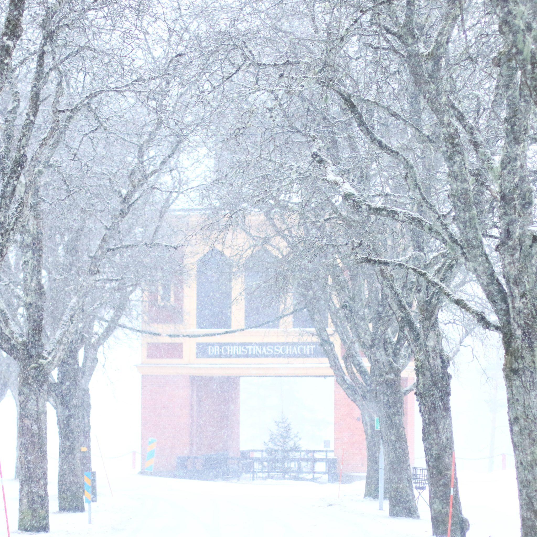 Promenad i vintervädret.